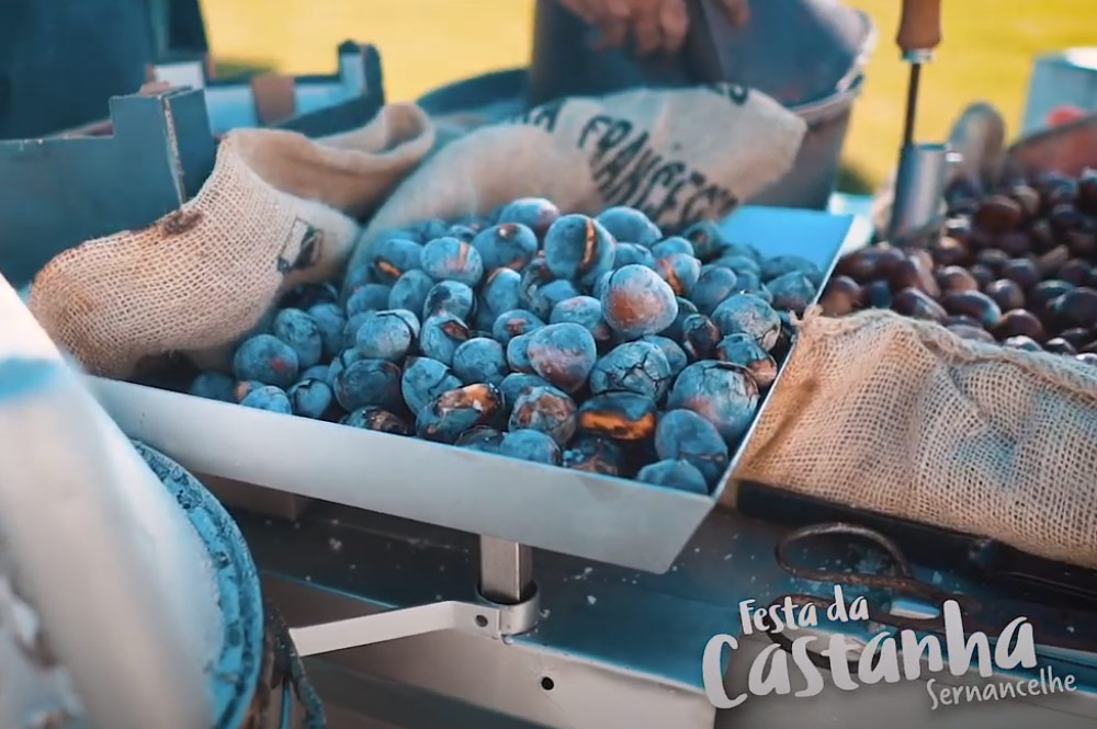 20201112_s.martinho_sernancelhe_gallery0601_festa-da-castanha