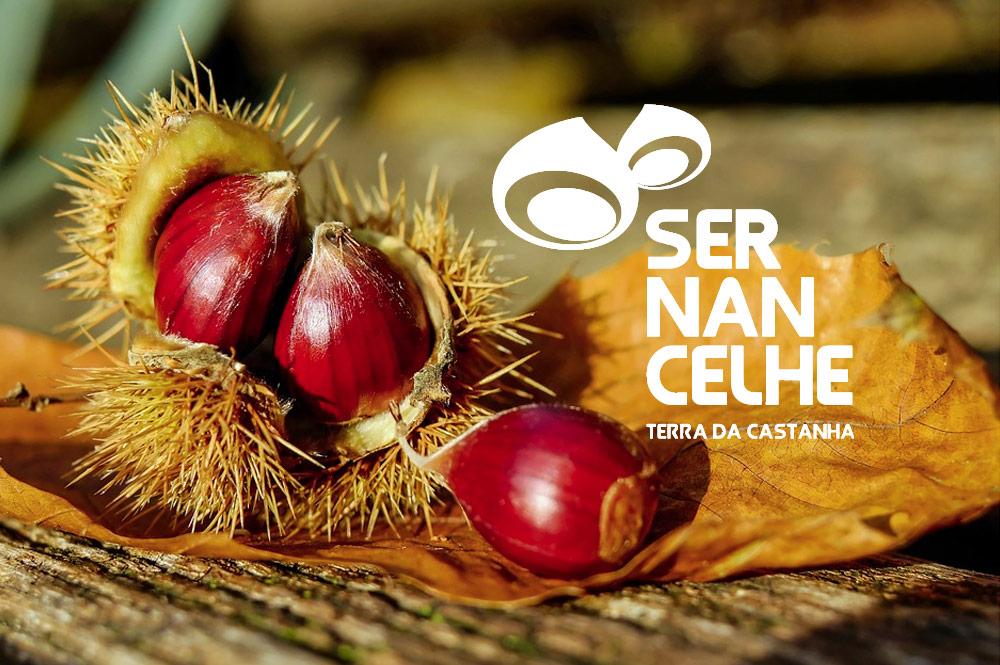 20201112_s.martinho_sernancelhe_gallery0604_festa-da-castanha