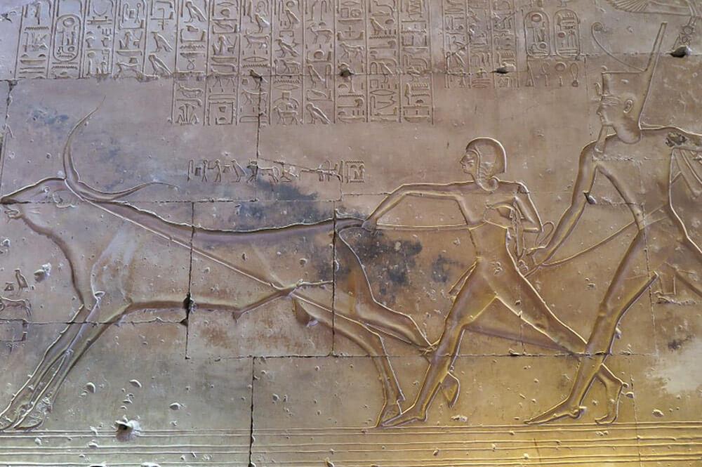 egito_sinai_gallery0701_cairo_museu